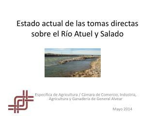 Estado actual de las tomas directas sobre el Río  Atuel  y Salado