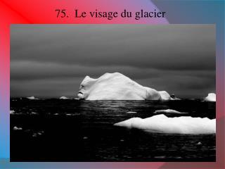 75.  Le visage du glacier