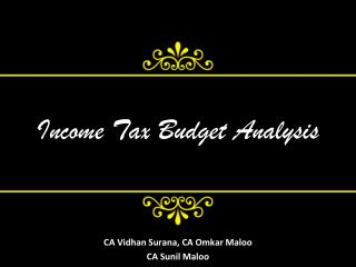 Income Tax Budget Analysis
