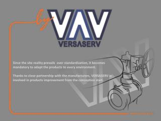 VERSASERV's business concept