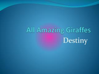 All Amazing Giraffes