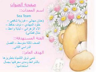 صفحة العنوان اسم المعدات::  Sea Team