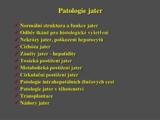 Patologie jater