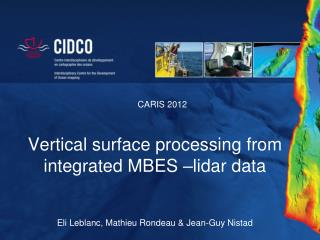 Vertical surface processing from integrated MBES – lidar  data