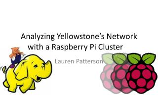 Analyzing Yellowstone's Network with a Raspberry Pi Cluster
