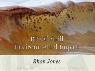 BP Oil Spill Environmental Impact