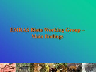 EMRAS Biota Working Group –Main findings
