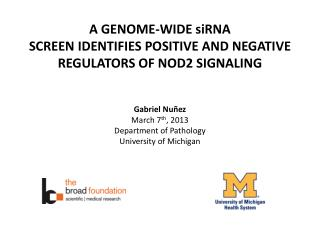 A  GENOME-WIDE  siRNA  SCREEN  IDENTIFIES POSITIVE  AND NEGATIVE  REGULATORS OF NOD2 SIGNALING
