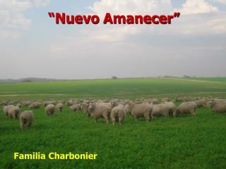 """""""Nuevo Amanecer"""""""