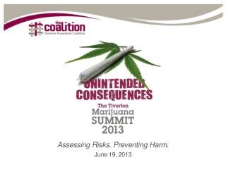 Assessing Risks. Preventing Harm. June 19, 2013
