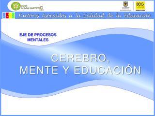 CEREBRO,  MENTE Y EDUCACI N