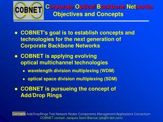 C orporate  O ptical  B ackbone  Net works
