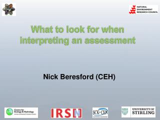 What to look for when interpreting an assessment