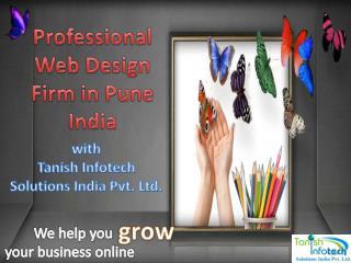 Professional web design firm in pune india