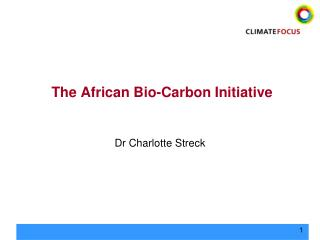 The African Bio-Carbon Initiative