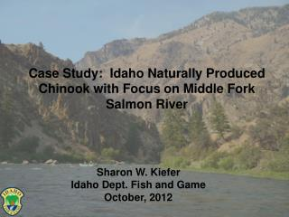 Case Study:  Idaho Naturally Produced Chinook with Focus on Middle Fork Salmon River