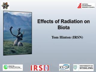 Effects of Radiation on Biota