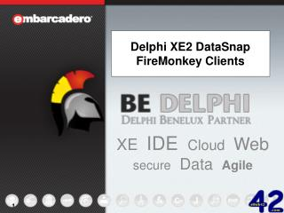 Delphi XE2 DataSnap FireMonkey Clients