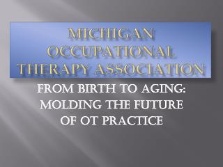 Michigan occupational therapy association