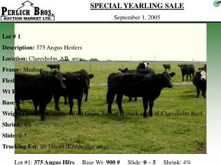Lot #1:  375 Angus Hfrs      Base Wt:  900 #      Slide:  0 – 5      Shrink: 4%
