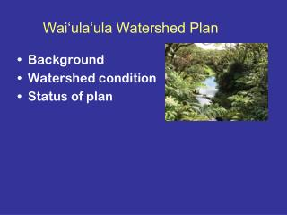 Wai'ula'ula Watershed Plan