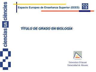 Espacio Europeo de Enseñanza Superior (EEES)