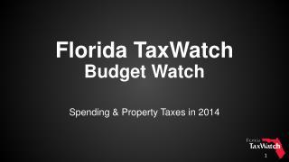 Florida TaxWatch Budget Watch