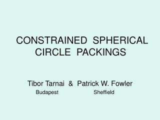 CONSTRAINED  SPHERICAL CIRCLE  PACKINGS