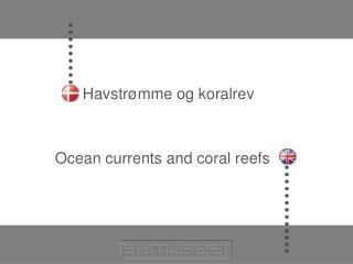 Havstrømme og koralrev