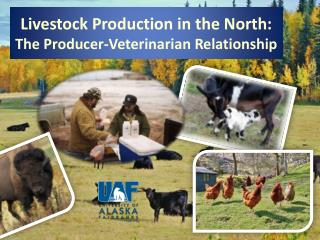 Livestock Production in the North: The Producer-Veterinarian Relationship