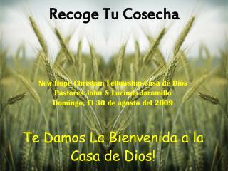 Recoge Tu Cosecha