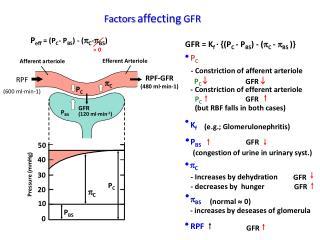 GFR = K f  · {(P C  - P BS ) - ( p C  -  p BS  )}