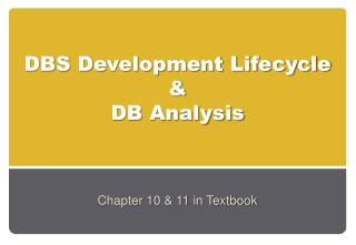 DBS Development Lifecycle & DB Analysis