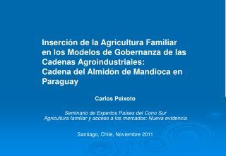 Carlos  Peixoto Seminario de Expertos Países del Cono Sur