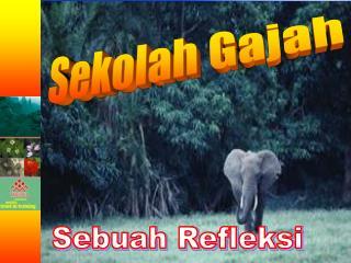 Sekolah Gajah