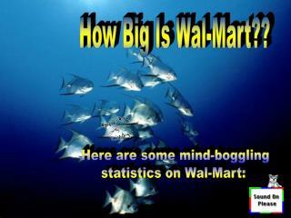 How Big Is Wal-Mart??