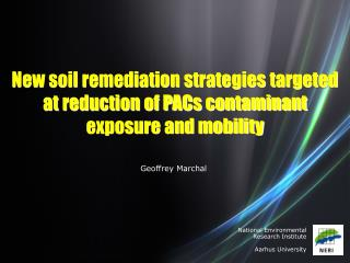 New soil remediation strategies targeted at reduction of PACs contaminant exposure and mobility