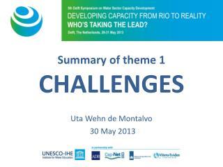 Summary  of  theme  1 CHALLENGES Uta Wehn de Montalvo 30 May 2013