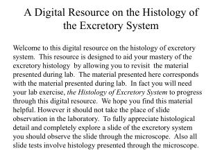 A Digital Resource on the Histology of the Excretory System