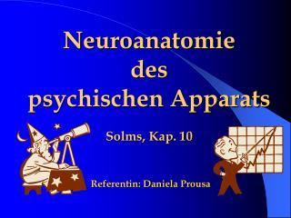 Neuroanatomie  des  psychischen Apparats  Solms, Kap. 10    Referentin: Daniela Prousa