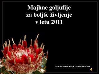 Majhn e goljufije za boljše življenje v letu 2011