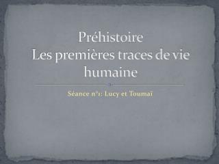 Préhistoire Les premières traces de vie humaine