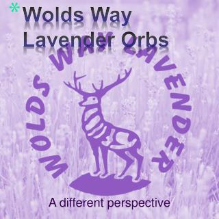 Wolds  Way Lavender Orbs