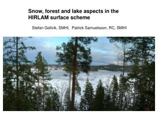 Snow, forest and lake aspects in the HIRLAM surface scheme