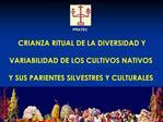 CRIANZA RITUAL DE LA DIVERSIDAD Y   VARIABILIDAD DE LOS CULTIVOS NATIVOS   Y SUS PARIENTES SILVESTRES Y CULTURALES