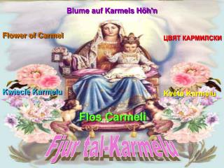 Květe Karmelu