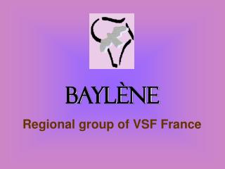 Baylène Regional group of VSF France