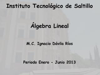 Instituto Tecnol�gico de Saltillo �lgebra Lineal M.C. Ignacio D�vila R�os