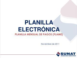PLANILLA ELECTR NICA  PLANILLA MENSUAL DE PAGOS PLAME