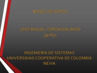 JOSE MIGUEL CERON GALINDO 391831